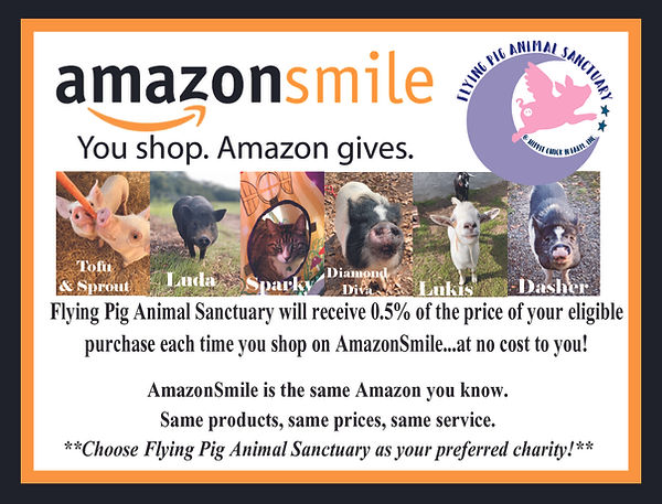 FPAS Amazon Smile Poster.JPG.jpg