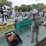 DIWA People and Pup Potluck