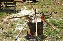 bois d'avant bois d'avenir.jpg