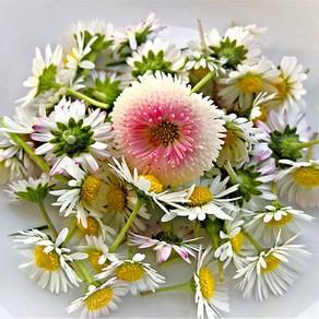 Beurre de fleurs comestibles