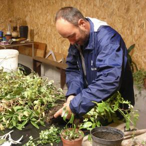 Echange de plantes et bouturages