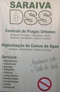 banner DSS.JPG