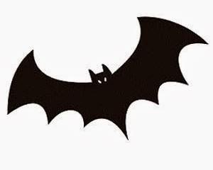 Morcegos... animais protegidos por lei!