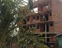 Ataque de mandarová e palmeira