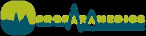 Driver Training NI - ProParamedics Logo