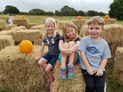 Aubrey-Pumpkin-Hay-Maze