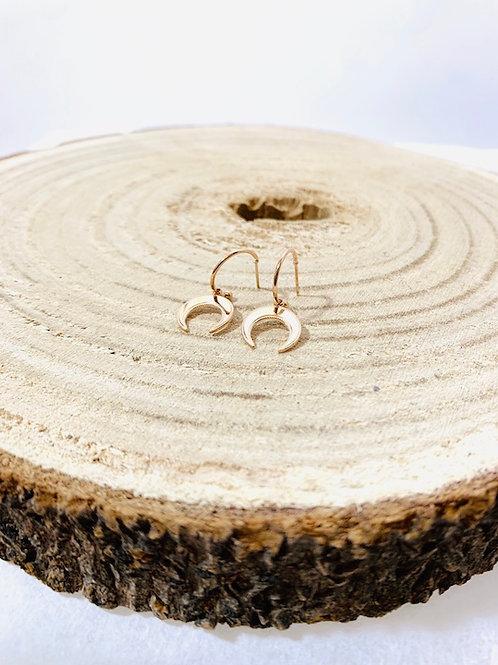 Boucles d'oreilles bijoux blois acier inoxydable