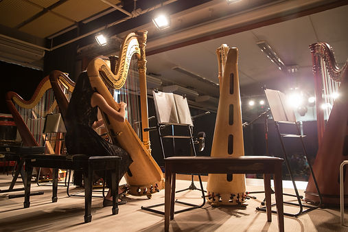 Voice Of The Harp Limited - Charity Harp Recital
