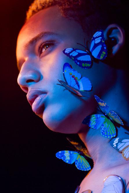 Dominic Jones - Blue Butterfly_IMG_6133.