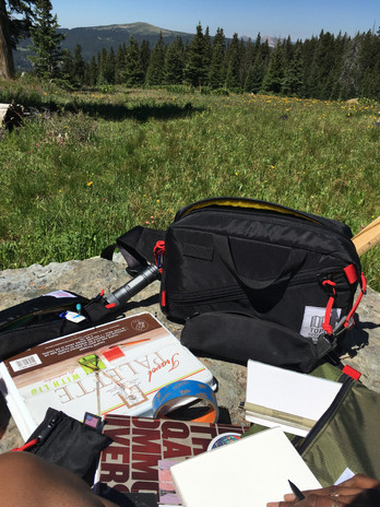 I keep my mobile studio all neatly packed into my TopoDesigns Quick pack when I go out to plein air paint.