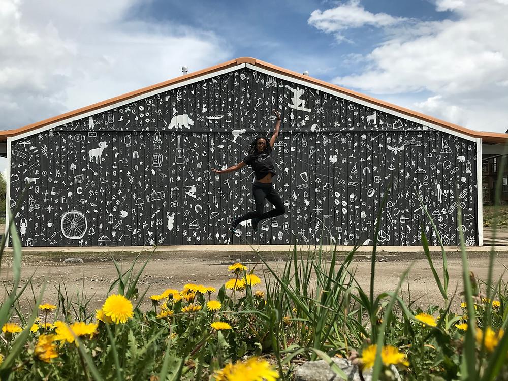 1/2 finished walls at Loge Breck