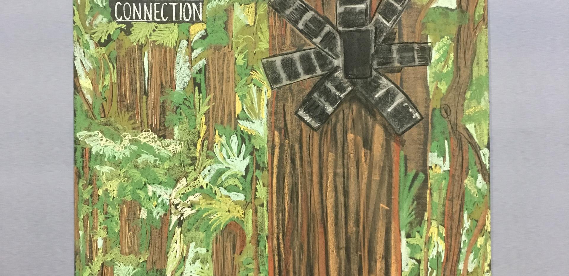 Rainforest Connect