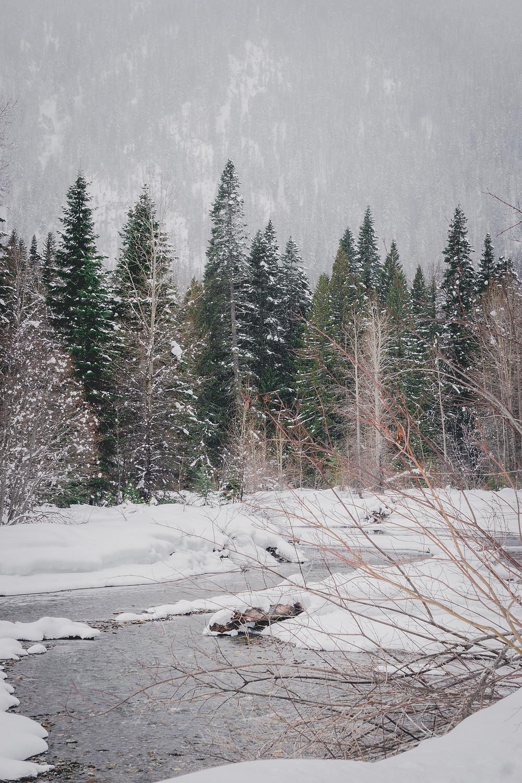 Photo by Maren Nelson. www.creativemaren.com