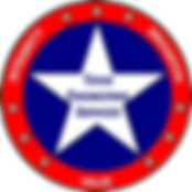 Texas Engineering Services Logo