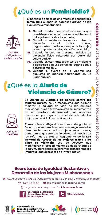 QUE ES FEMINICIDIO.png