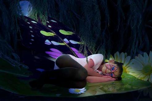 """""""Mariposa dormida"""""""