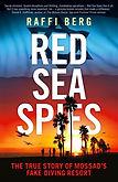Red Sea Spies.jpg