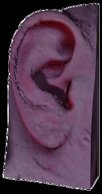 trans oor.png
