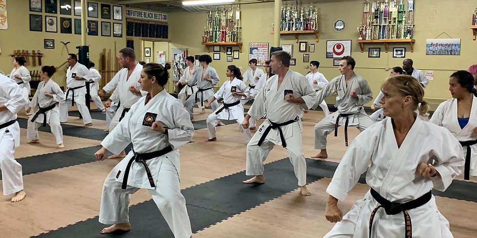 Adult Kyu Belt Testing