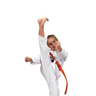 bigstock-Little-Girl-Practice-Karate-100