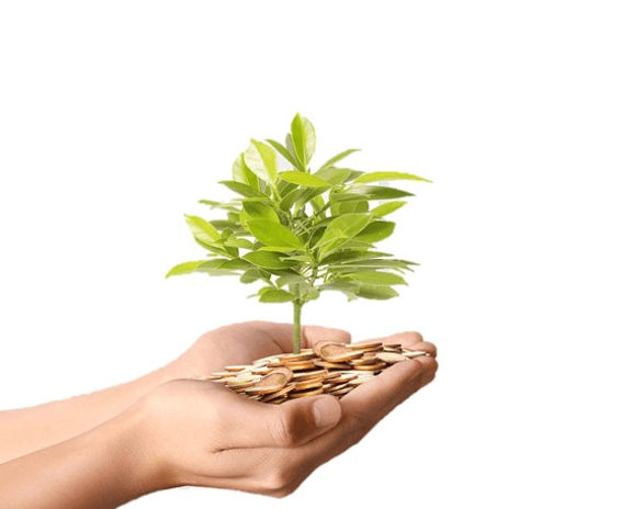 Hand holding coins Plants.jpg