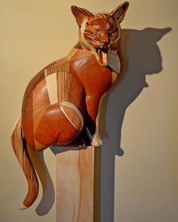 """""""Cirque De Cat"""""""