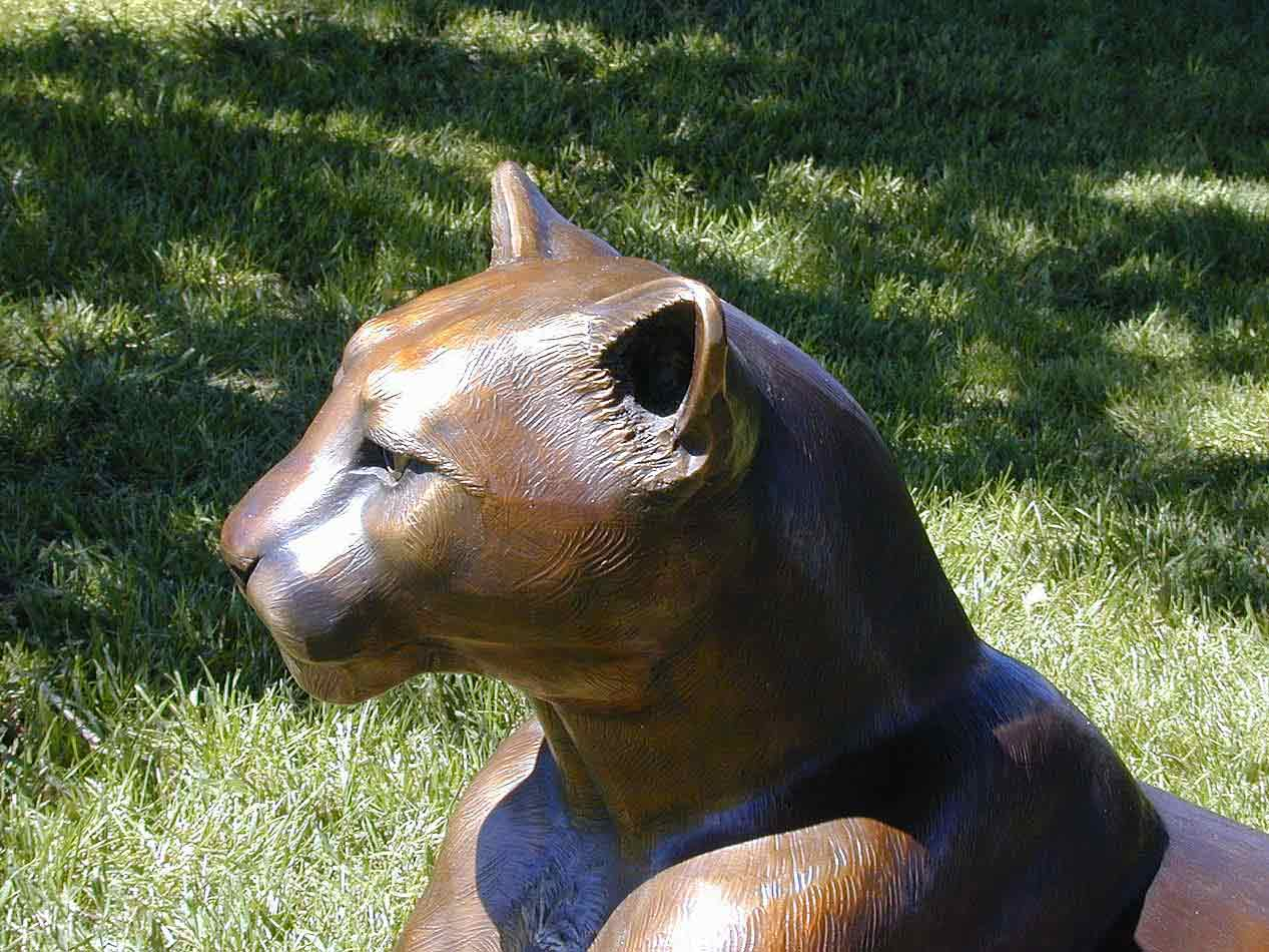 """""""Cougar"""" - Detail"""