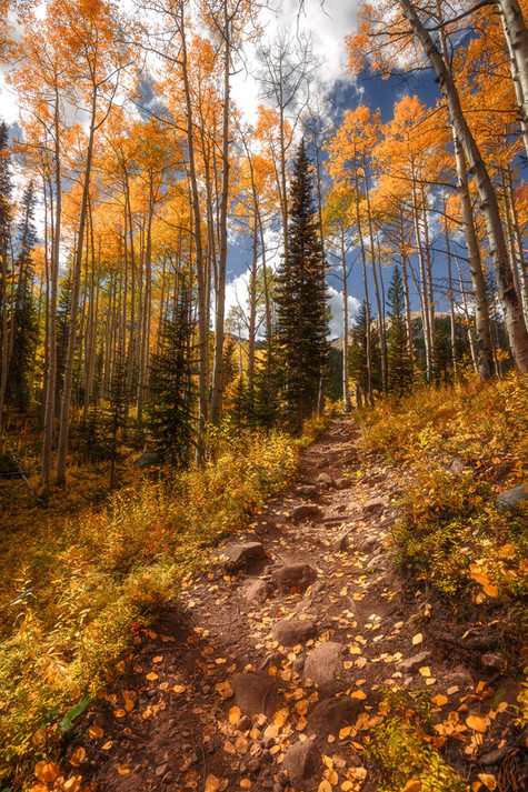 Crested Butte Prints-8 COMPRESSED.jpg