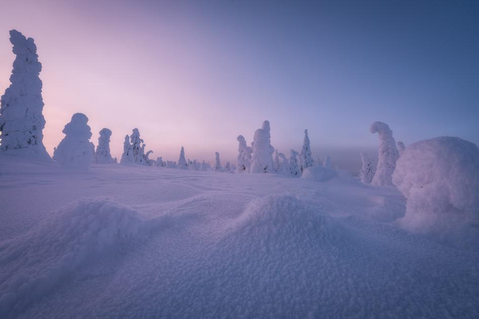 Finland Prints-3.jpg