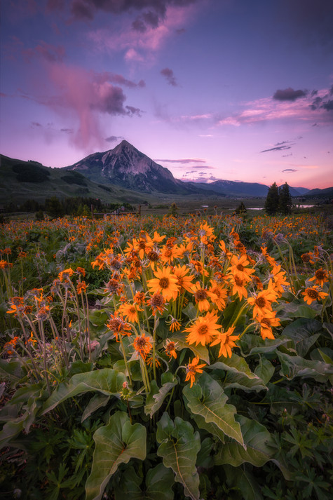 Crested Butte Prints 2-9.jpg