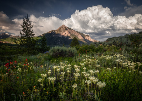 Crested Butte Prints 2-12.jpg