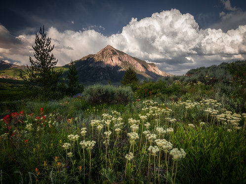 Crested Butte Metal Print 5