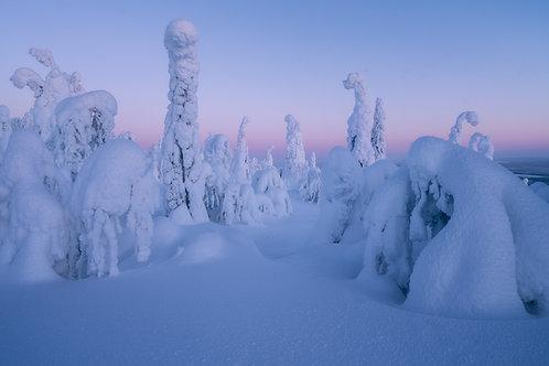 Finland Canvas Print 9