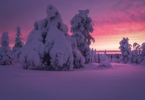 Finland Prints-8.jpg