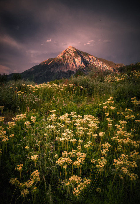 Crested Butte Prints 2-15 COMPRESSED.jpg