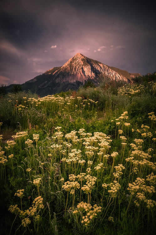 Crested Butte Metal Print 18