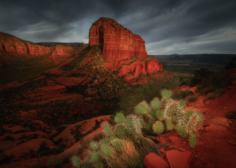 Arizona Prints-2.jpg