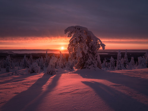 Finland Metal Print 4