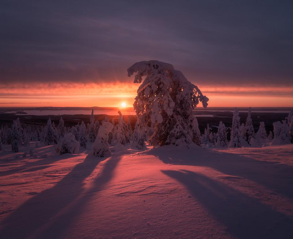 Finland Prints-9.jpg