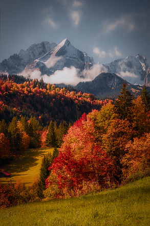 Bavarian Autumn COMPRESSED.jpg