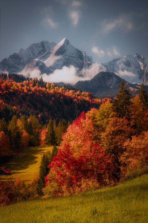 Bavarian Autumn COMPRESSED.jpg