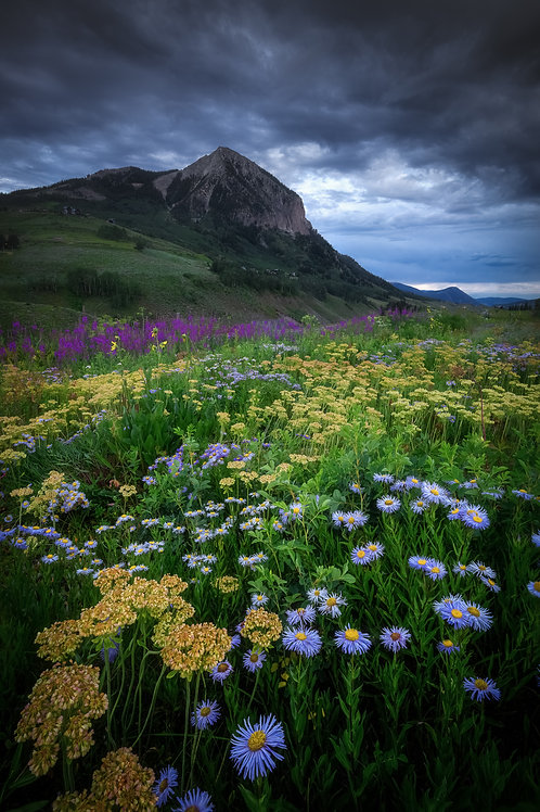 Crested Butte Canvas Print 9