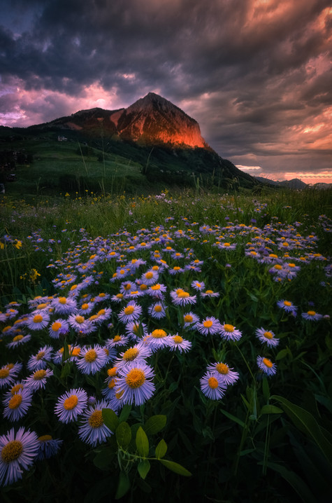 Crested Butte Prints 2-18.jpg