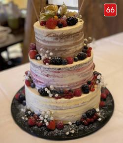 Torte 66