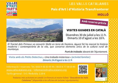 cartell_Molló_CAt_A3.jpg