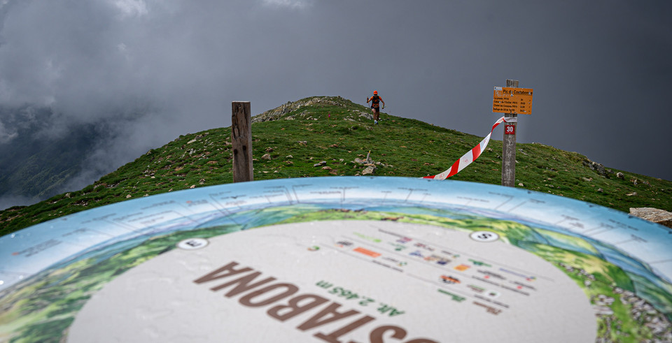 2021-06-06Mollo_Trail-0003.jpg