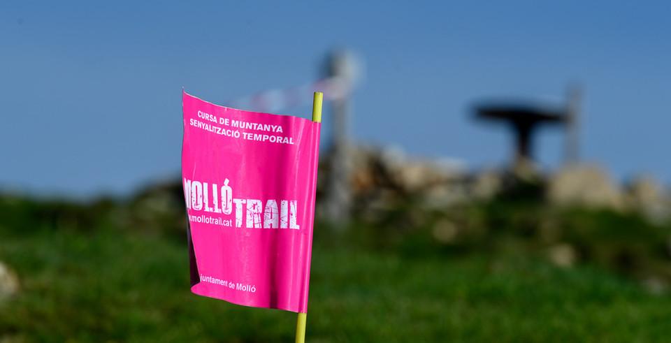 2021-06-06Mollo_Trail-0001.jpg