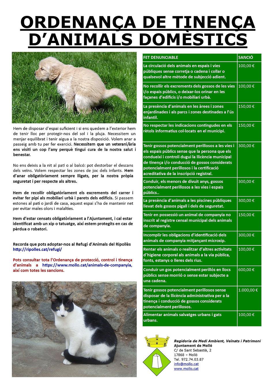 ANIMALS DE COMPANYIA V2.jpg