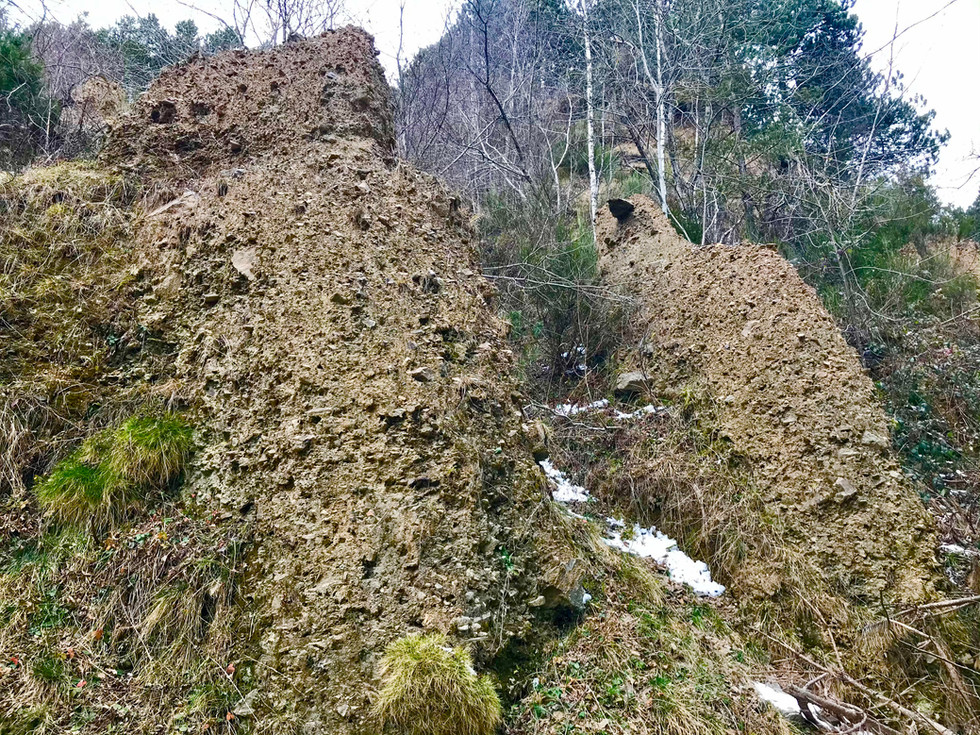 Esbaldregalls estratificats de Coll d'Ares