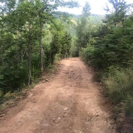 Millora de 9,4 km de camins rurals de Ginestosa i Moixons